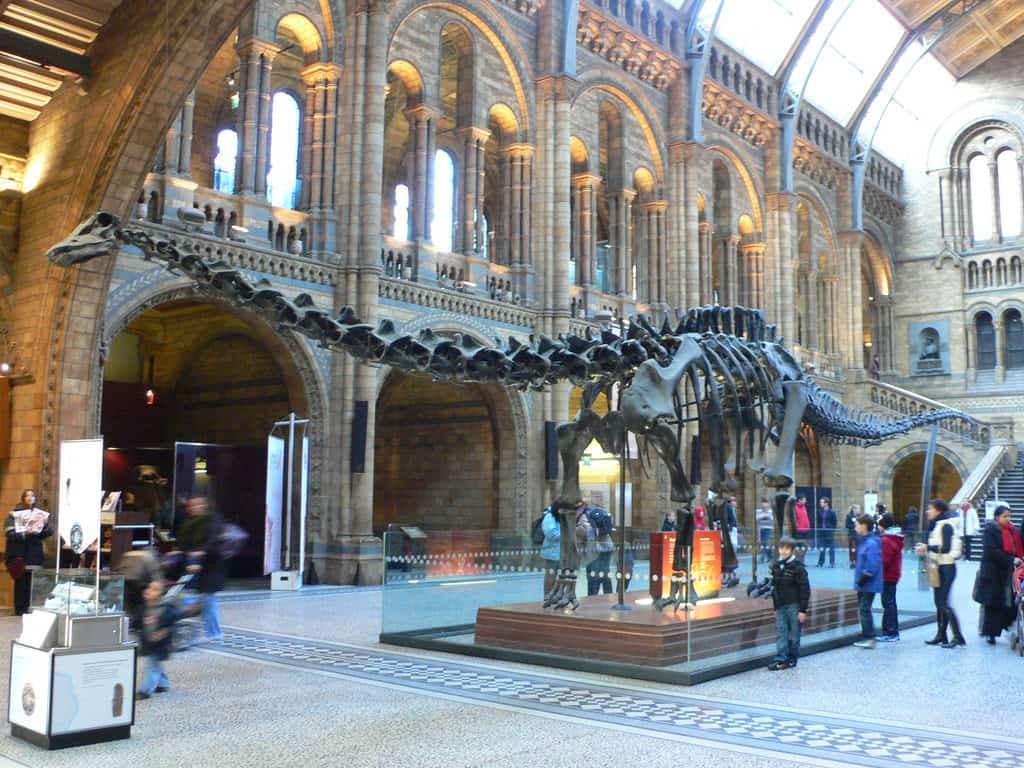 Natural History Museum - London With Kids