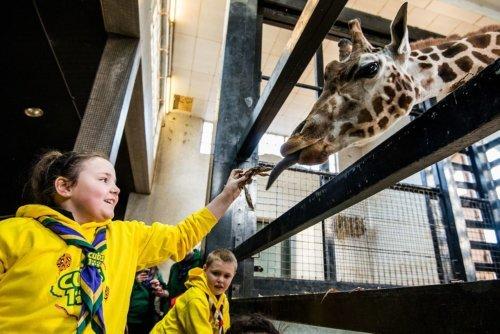 ZSL London Zoo - London With Kids