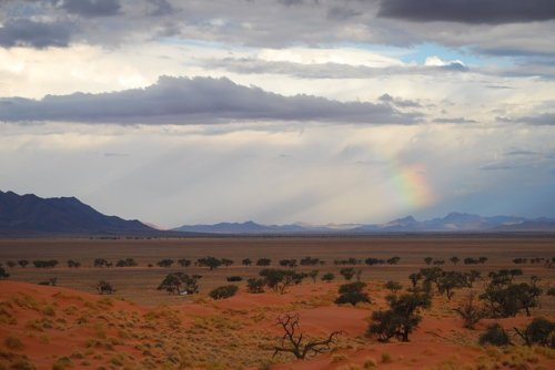 African vista in the Namibian summer