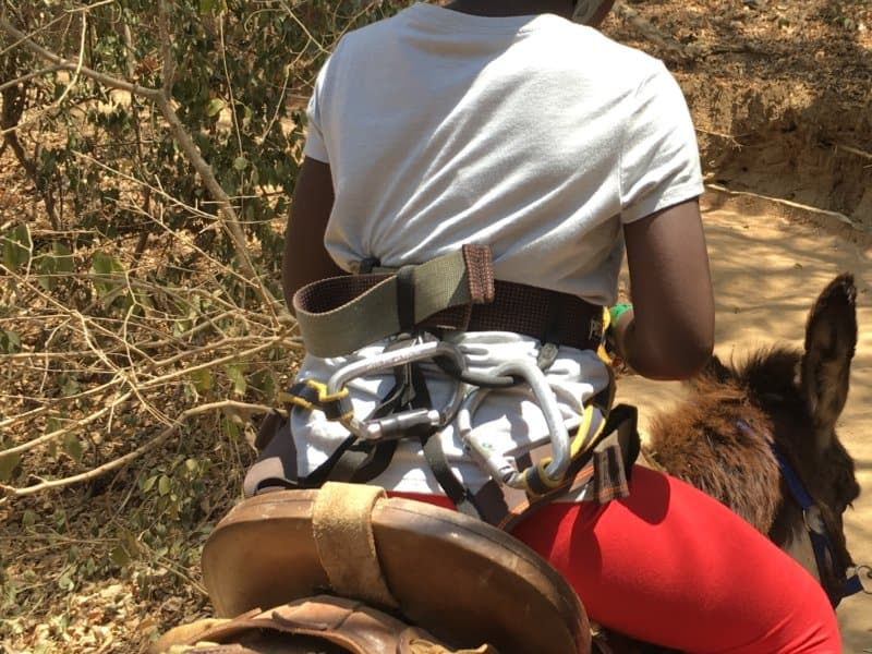 Riding a Donkey - Jalisco, Mexico with Kids