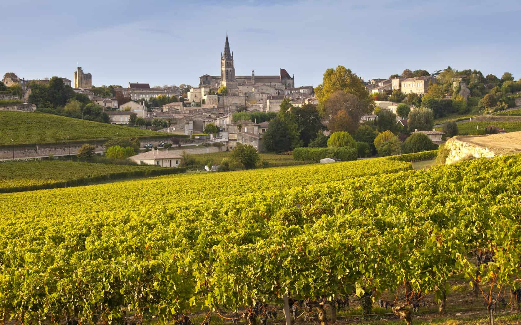 Bordeaux, France - Most Beautiful Vineyards and Wine Regions in Europe