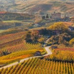 Top 10 Most Beautiful Vineyards and Wine Regions in Europe