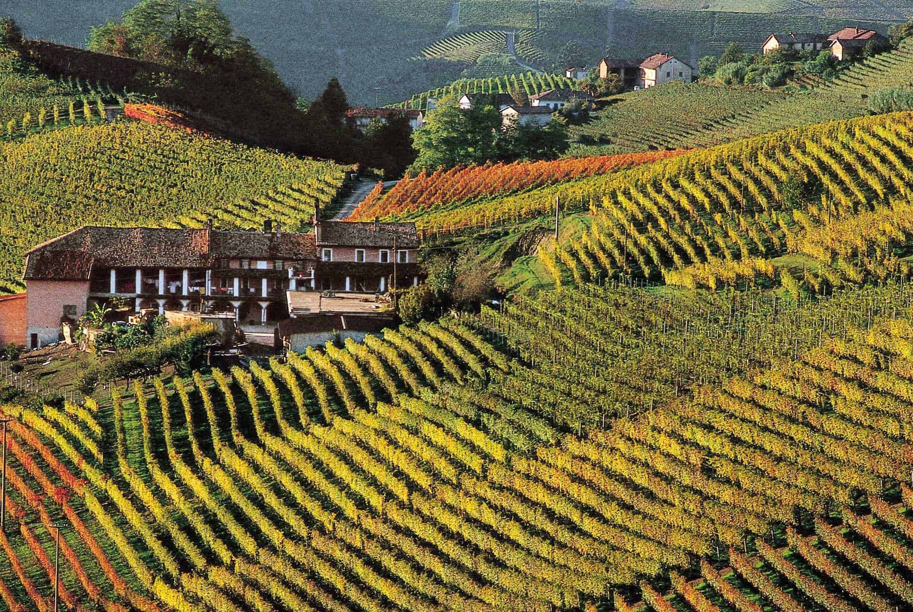 Tuscany, Italy - Most Beautiful Vineyards and Wine Regions in Europe
