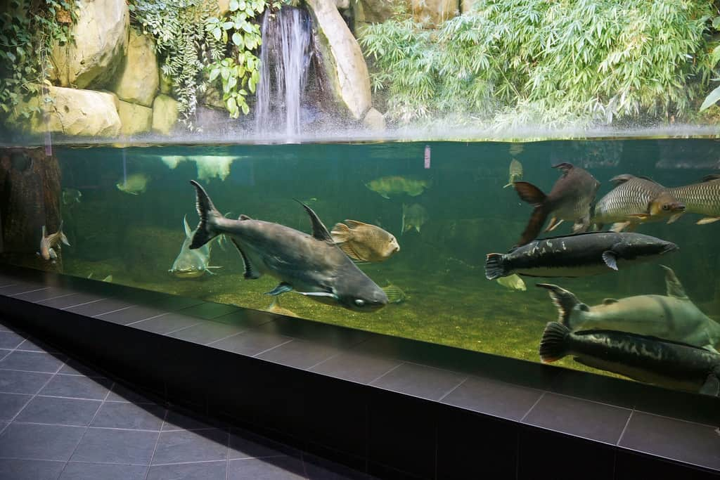 Beijing Zoo, Xicheng District - Best Rated Zoos in the World