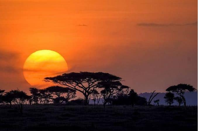 Serengeti Plain - Best Natural Phenomenon