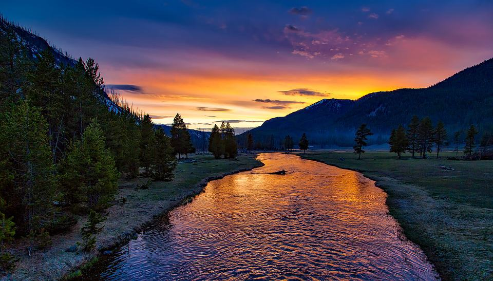 River, Yellowstone National Park