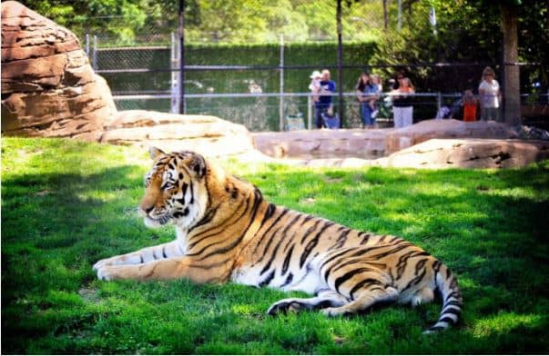 Cape May County Park and Zoo - New Jersey Vacation Spots