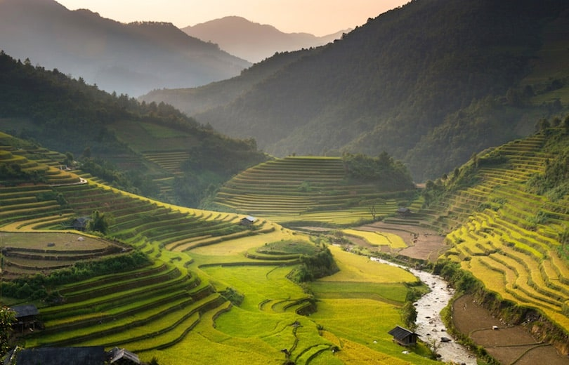 Sa Pa Rice Terraces - Best Things to Do in Vietnam