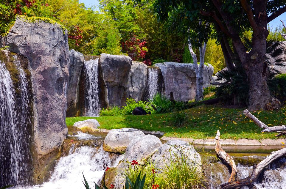 San Diego Zoo, California - Best Rated Zoos in the World