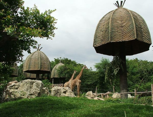 Dusit Zoo - Bangkok with Kids