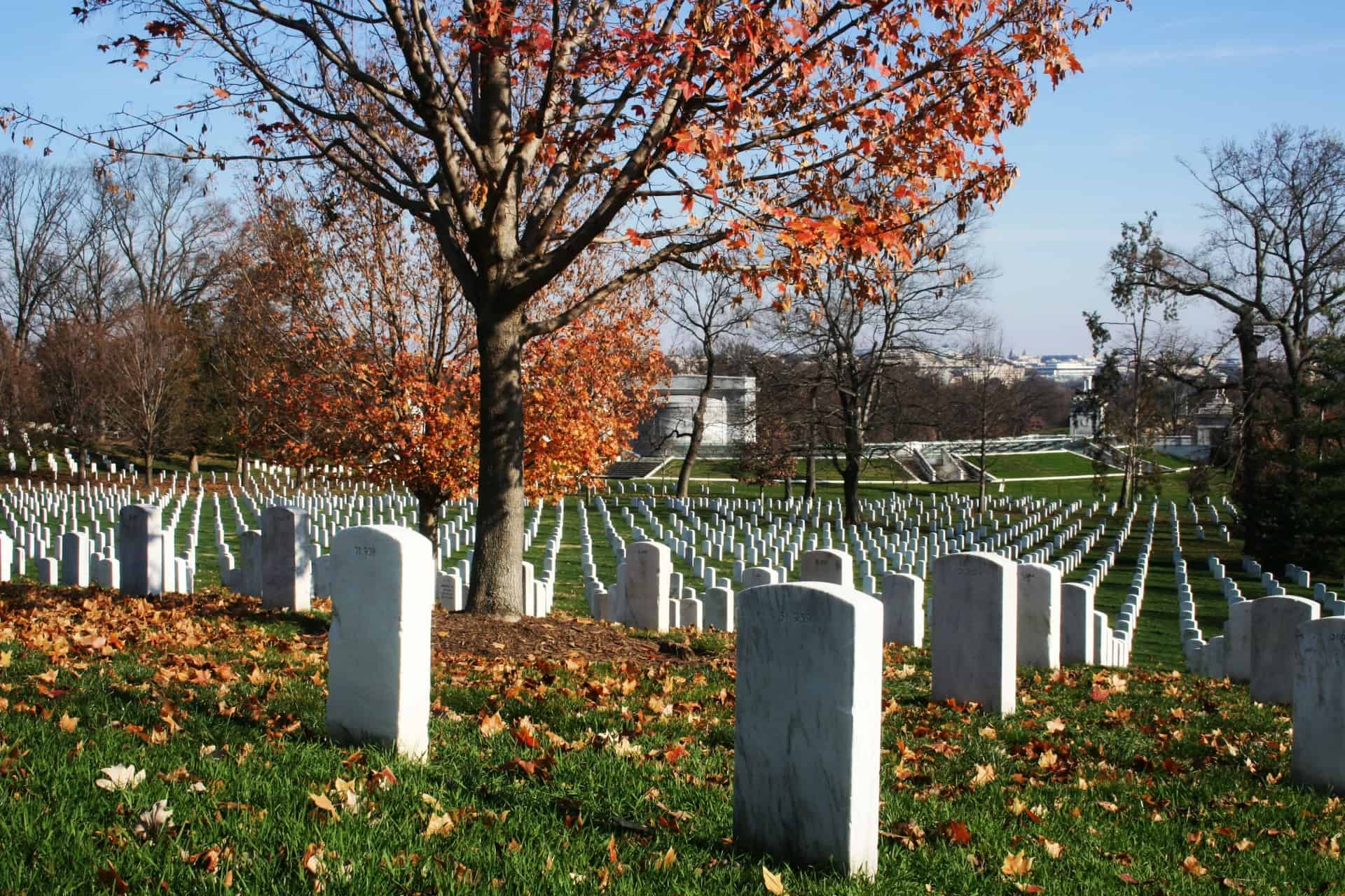 Arlington National Cemetery - Best Free Things to Do in Washington, D.c.