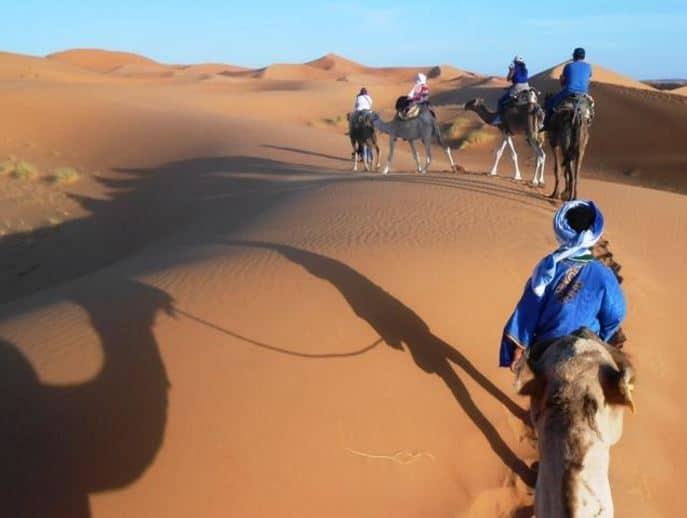 Camel Caravan, Merzouga, Morocco