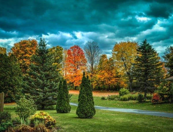 Vermont Holiday