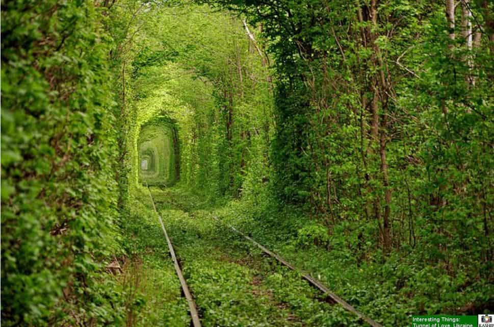 Tunnel of Love, Ukraine  - Bucket List Travel Ideas