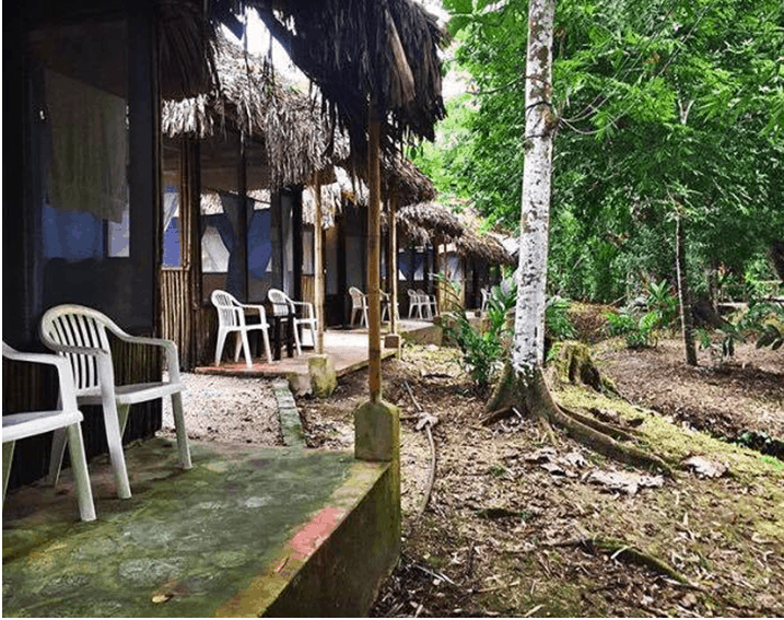 Accommodation in the Jungle - Best Accommodation Booking Tips