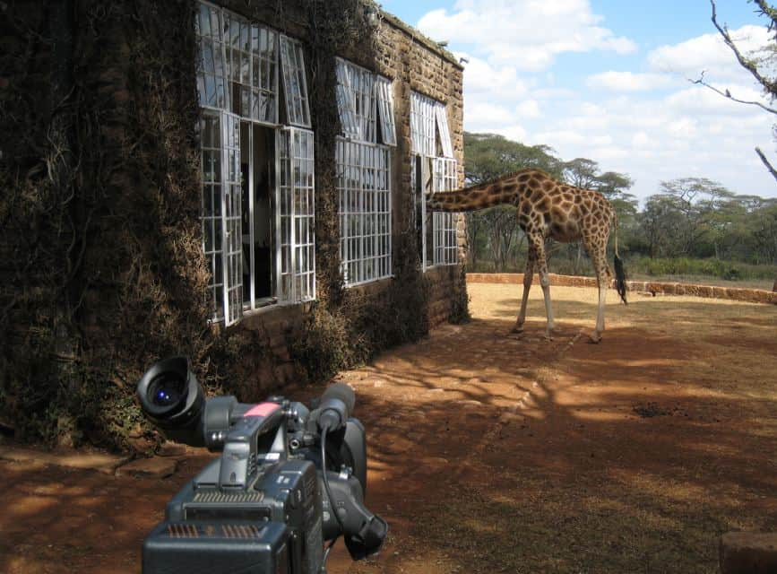 Giraffe Hotel, Kenya - Bucket List Travel Ideas