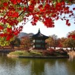 Top Family-friendly Places to Visit in Seoul