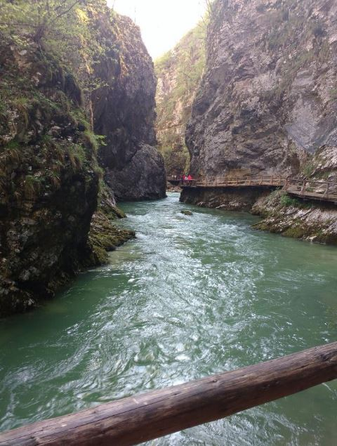 Vintgar Gorge - Best Things to Do in Slovenia