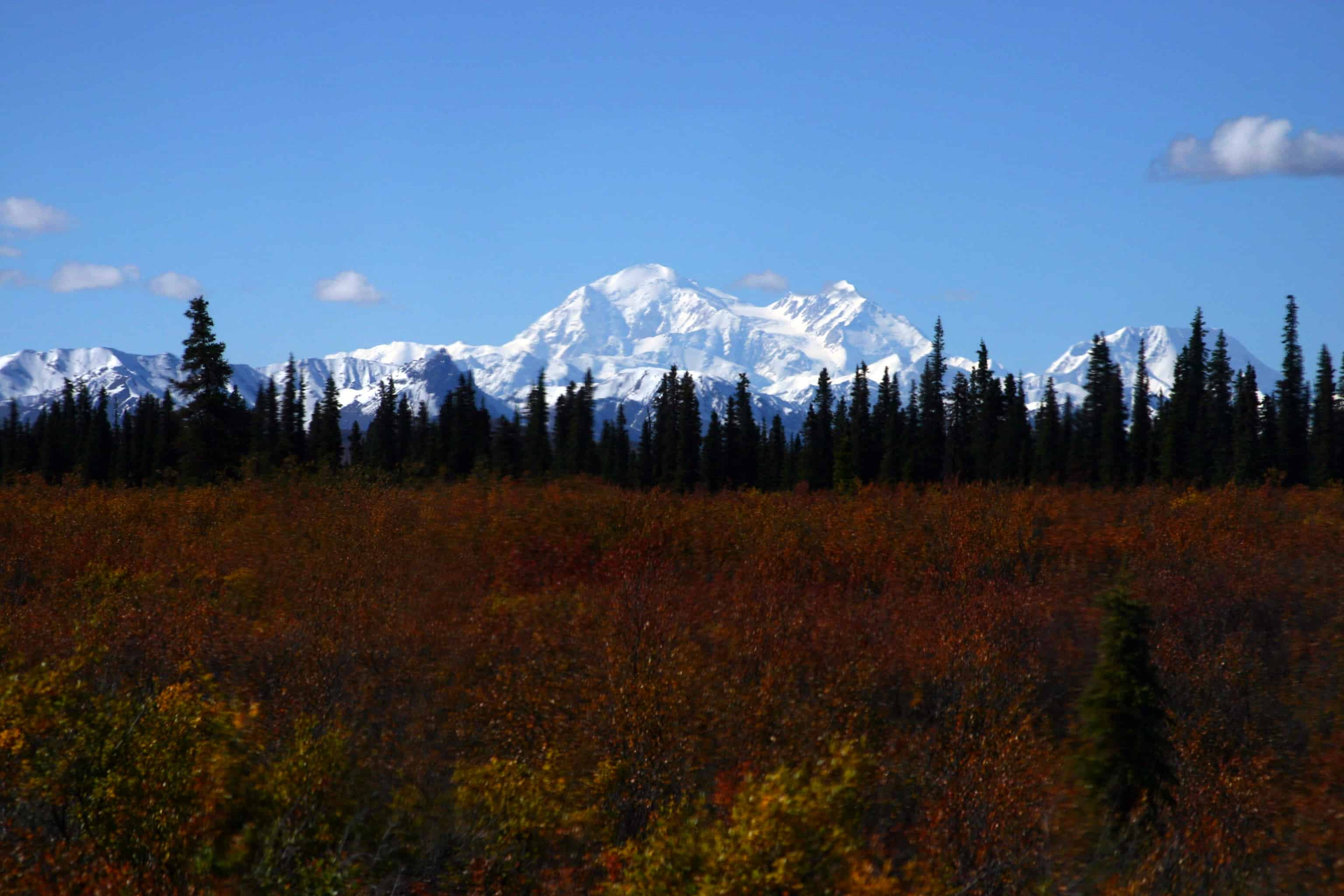 Denali National Park and Preserve - Best Family Vacations Spots in the USA