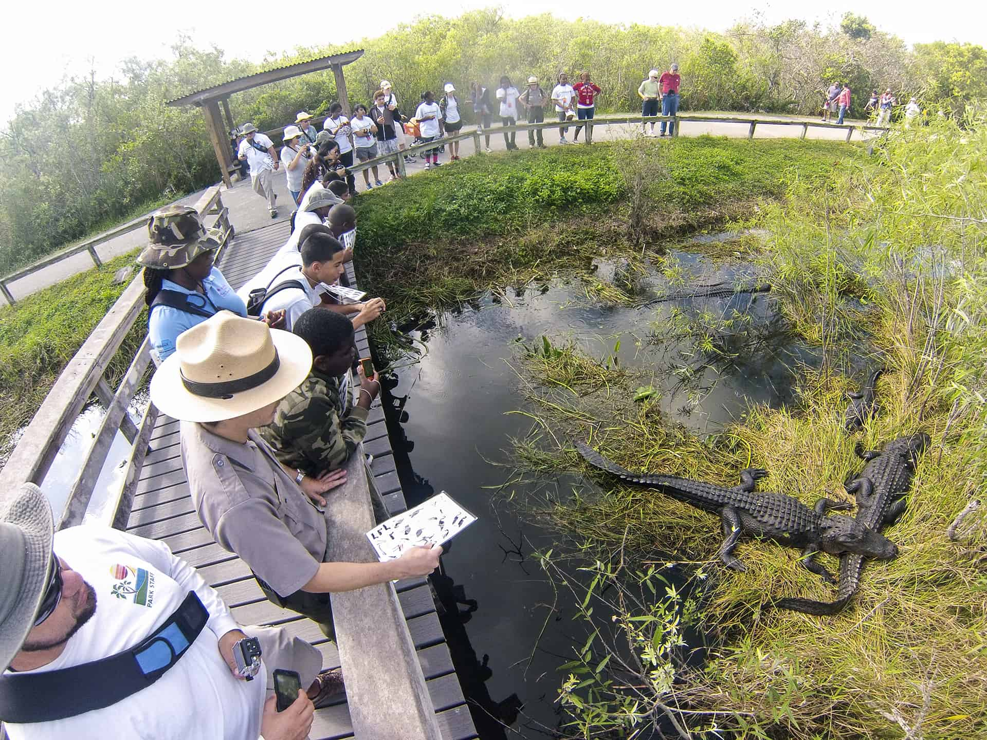 Everglades National Park - Best Family Vacations Spots in the USA