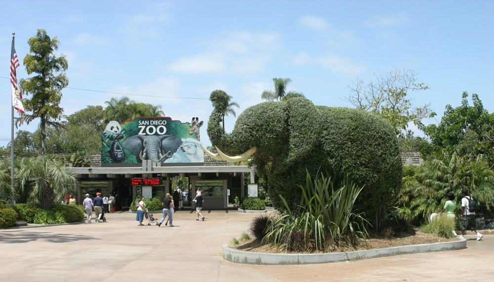 San Diego Zoo - Best Family Vacations Spots in the USA