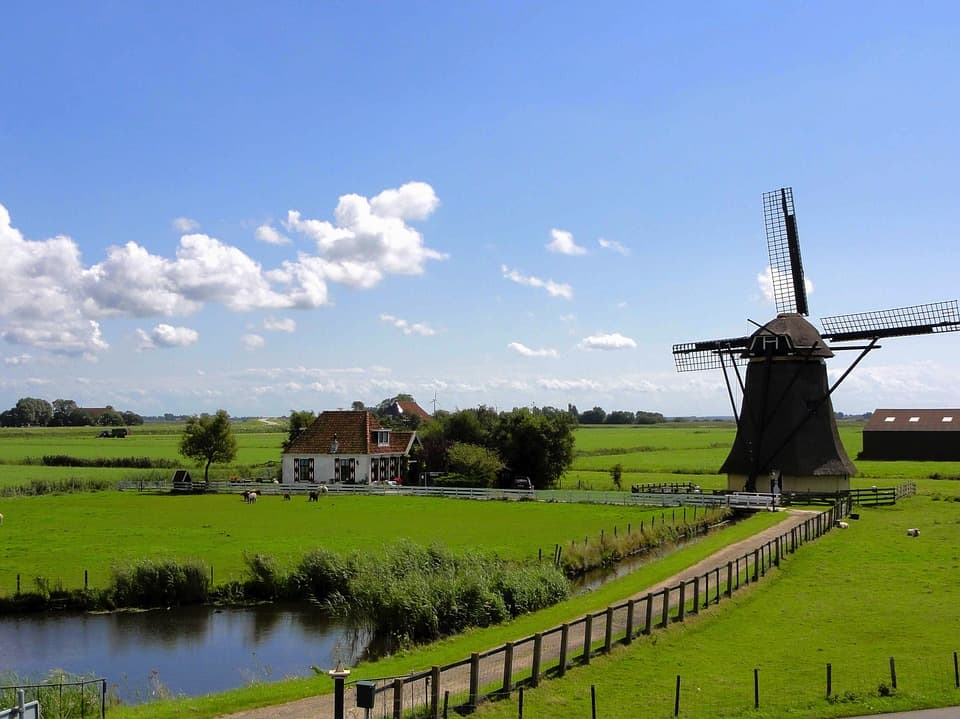 Things To Do With Family In The Netherlands