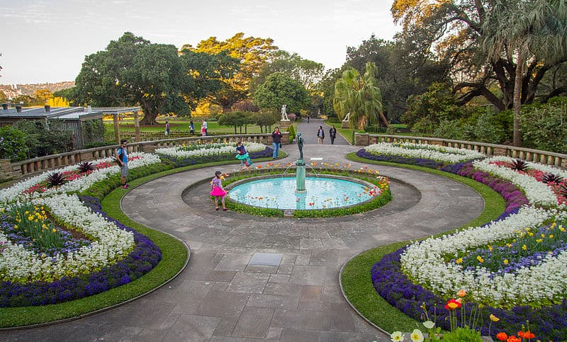 Royal Botanic Gardens - Best Things to Do in Sydney With Kids