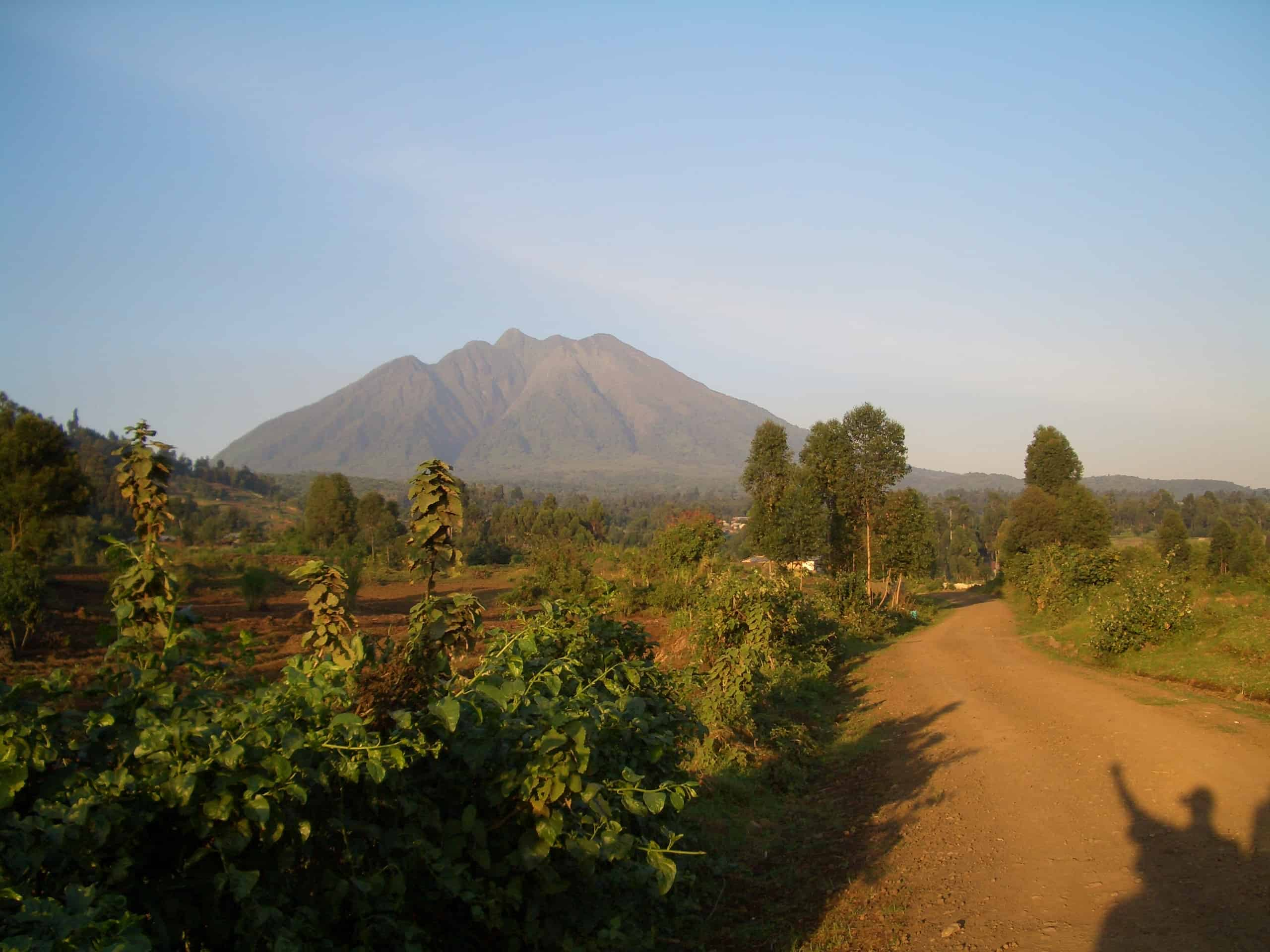 Bwindi Impenetrable National Park - Africa With Kids