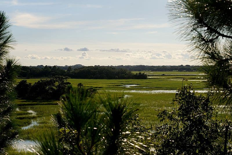 Kiawah Island, South Carolina - Best Continental US Islands for Families