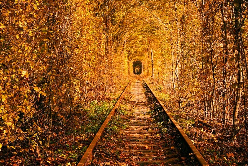 Tunnel of Love, Ukraine - Magical Places You Won't Believe Exist In The World