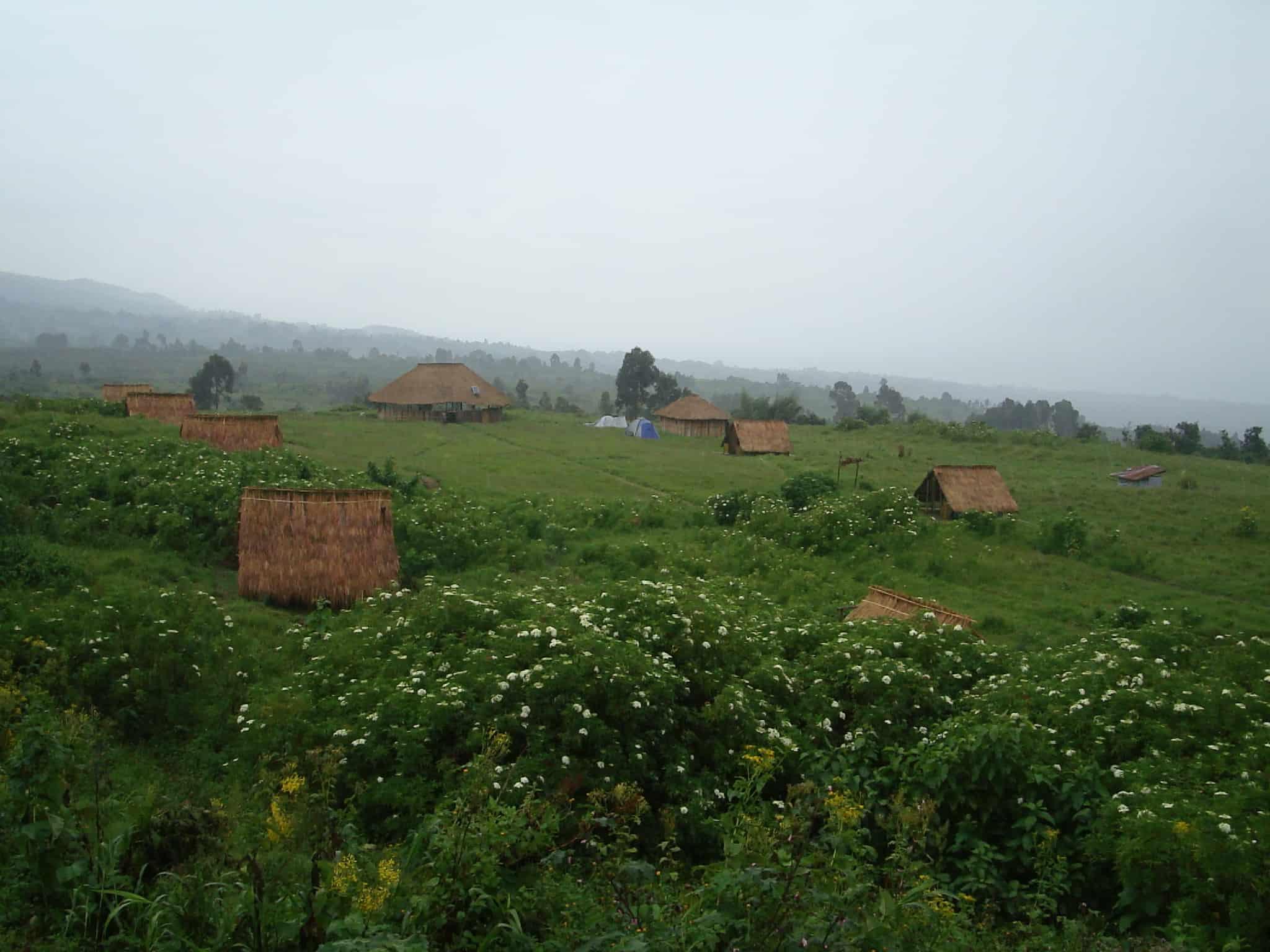 Virunga National Park - Africa With Kids