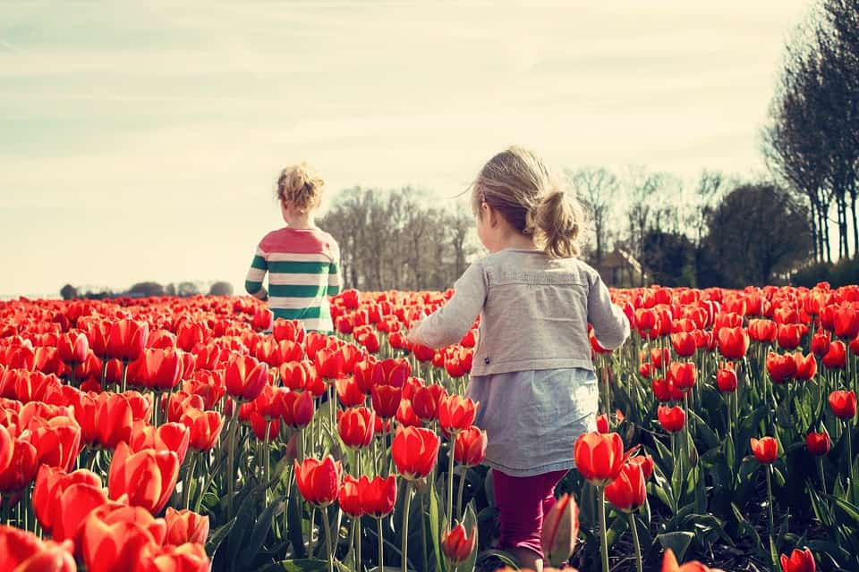 Kids in Keukenhof, Netherlands