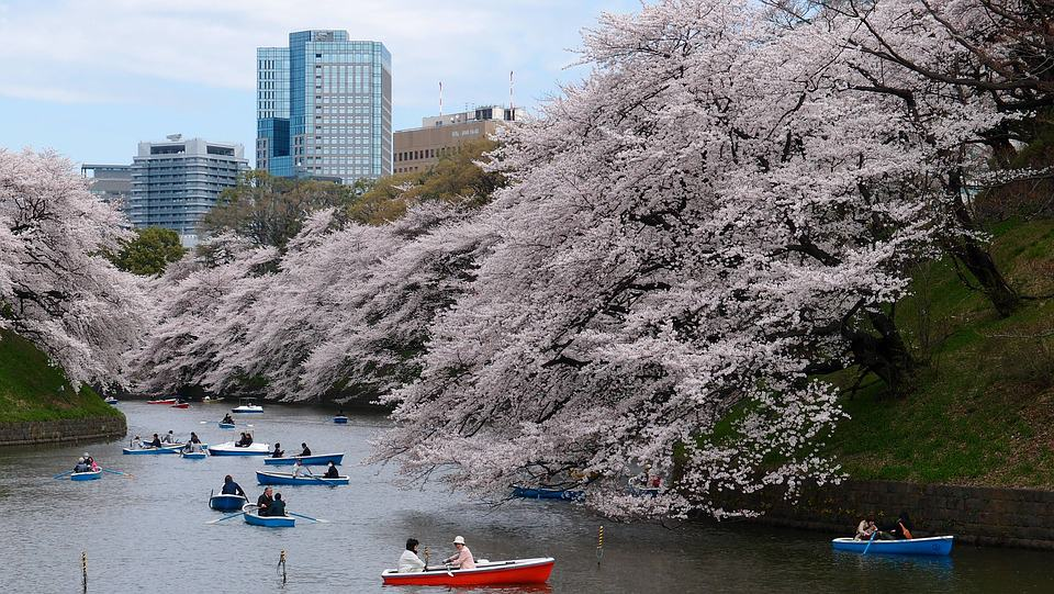 Japan - Safest Countries to Visit With Kids