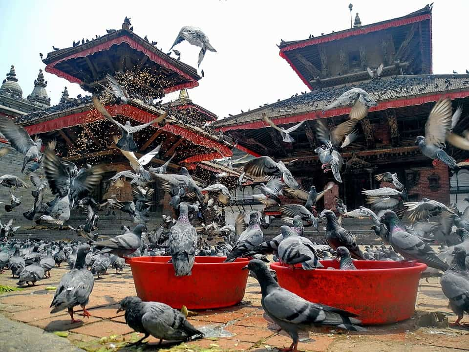 Durbar Square - Nepal With Kids