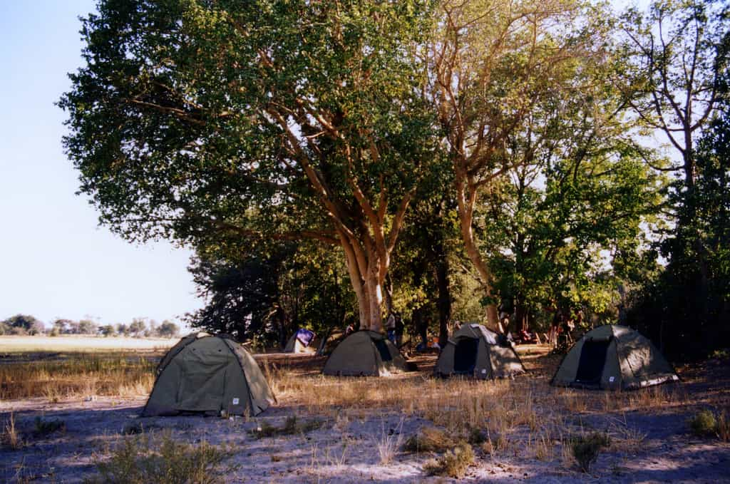 Delta Camp Okavango - Botswana With Kids