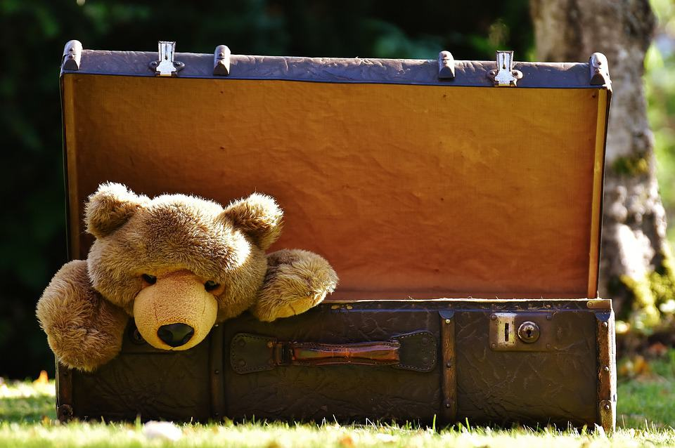 Luggage - Travel With Kids 101