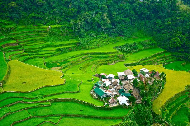 Banaue Rice Terraces, Philippines - Natural Wonders You Won't Believe Exist