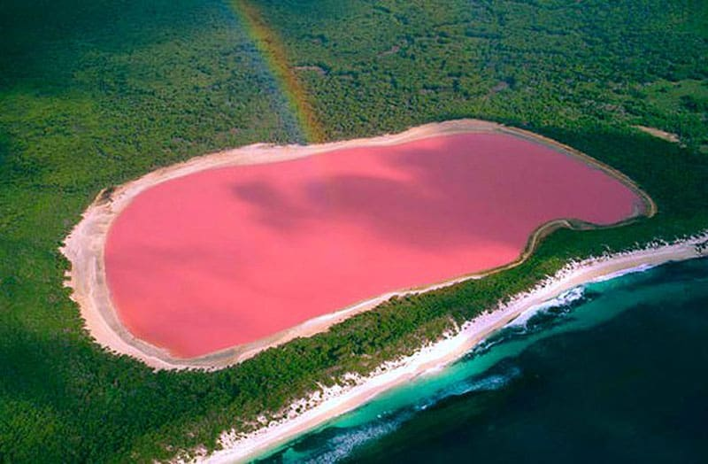 Pink Lake Hillier - Natural Wonder