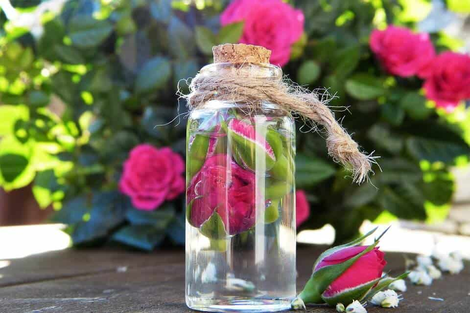 Rose Water in glass bottle - Bulgaria with Kids