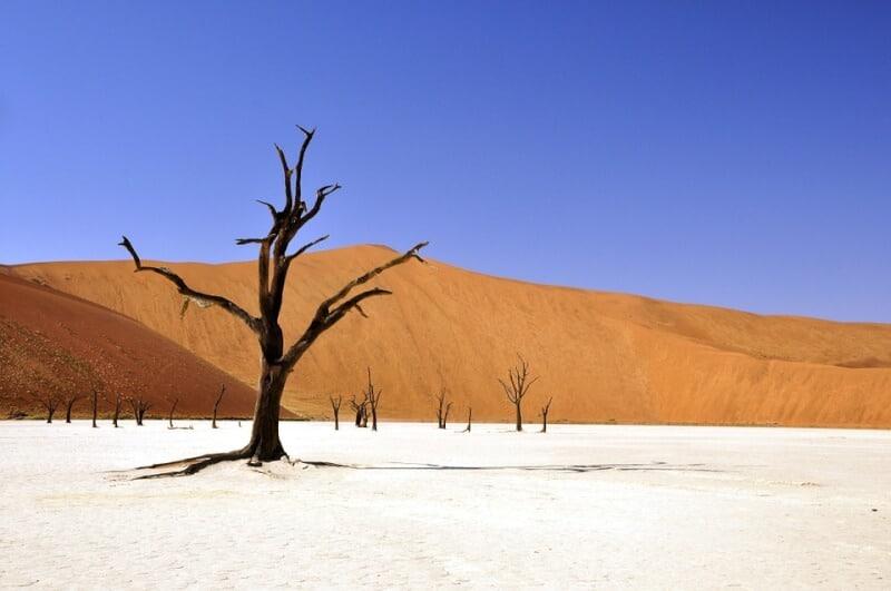 Namib Desert - Namibia with Kids