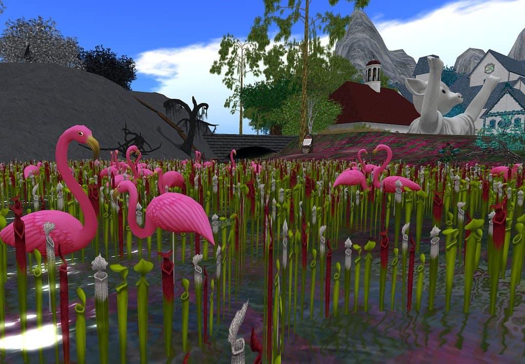 Flamingo's Wildlife Habitat - Las Vegas with Kids
