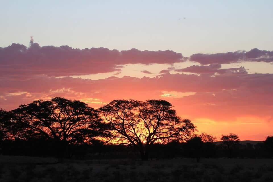Kalahari Desert - Best Things to do in Botswana with kids