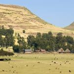 Places to Go With Kids: Ethiopia with Kids