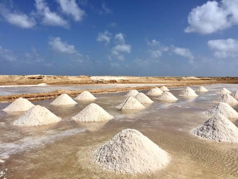 Salt Mine, Sal