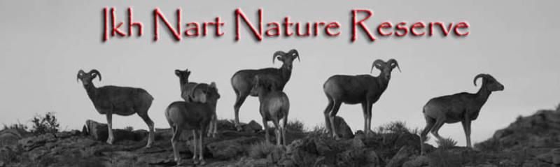 Ikh Nartiin Chuluu Nature Reserve