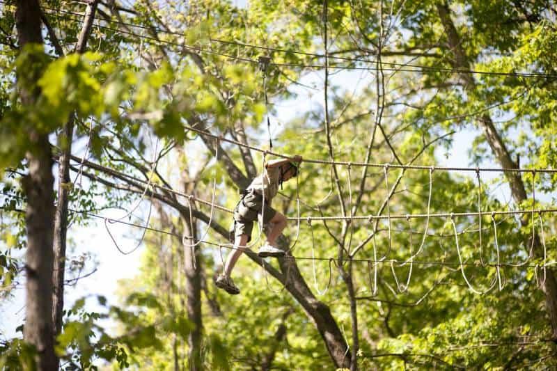 Treetop Adventure Park - Sydney Australia With Kids