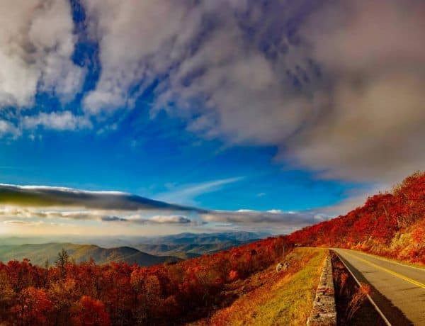 Best Scenic Drives In The USA