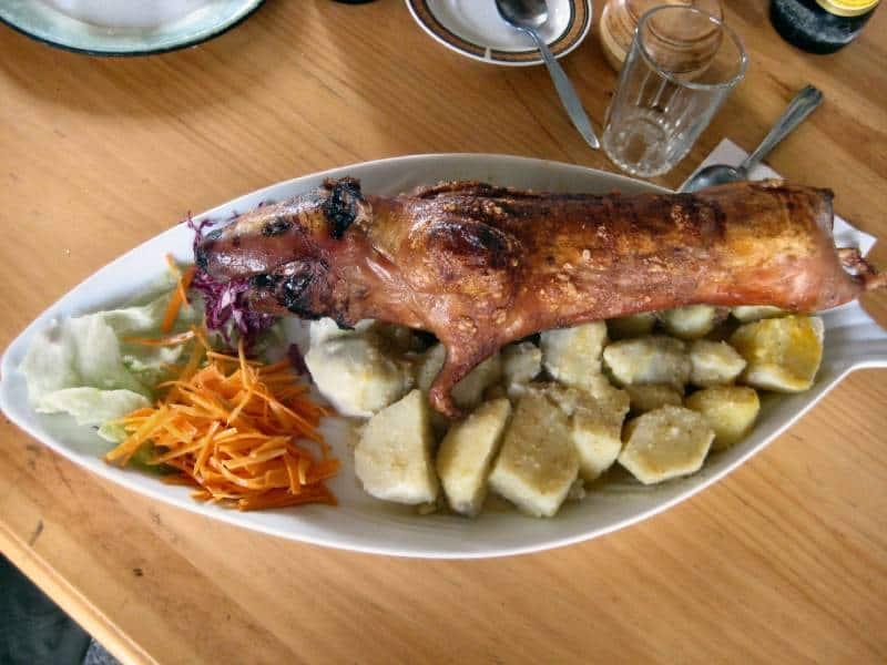 Ecuadorian food - Swing at the End of the World – Baños, Ecuador