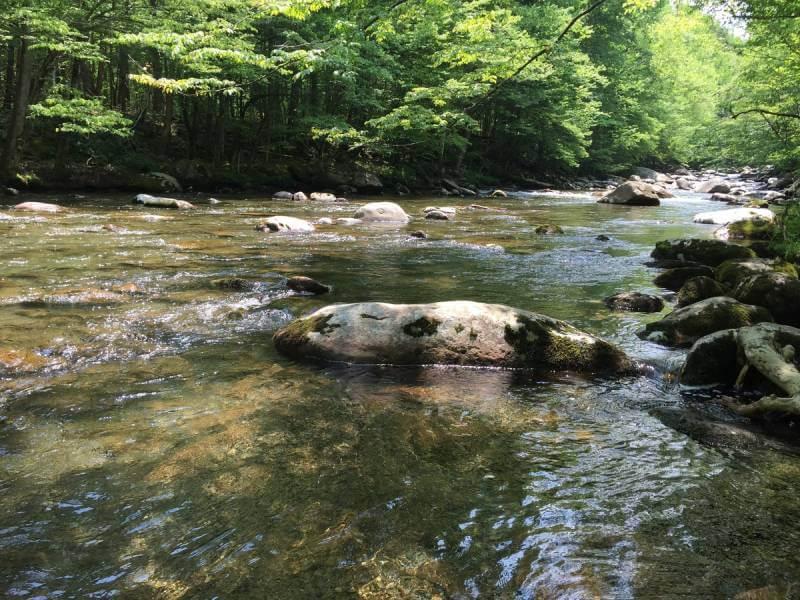 Asheville, North Carolina - Best Vacation Spot in All US