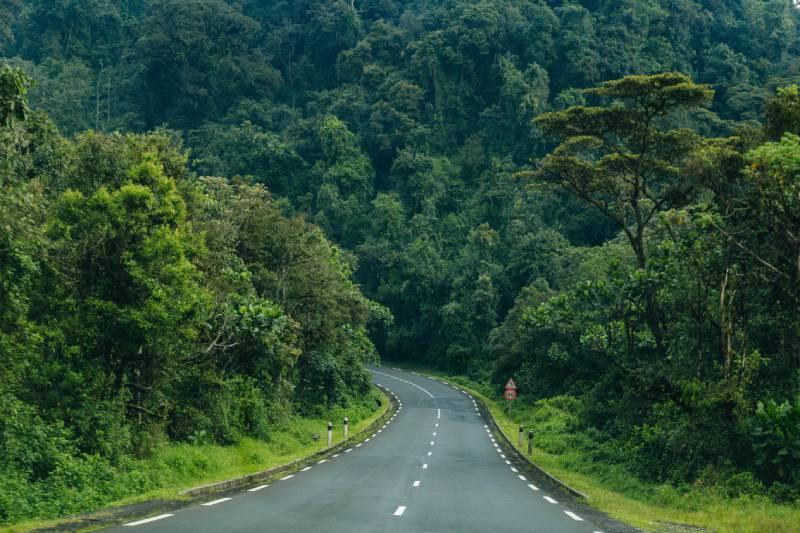 Nyungwe Park, Rwanda - Best African Countries